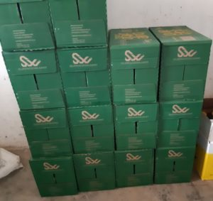 Photograph of boxes that each contain 12 bottles of cooking oil